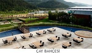 cay_bahcesi