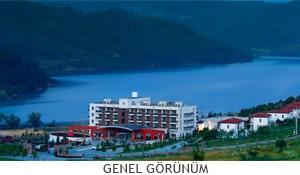 genel_gorunum