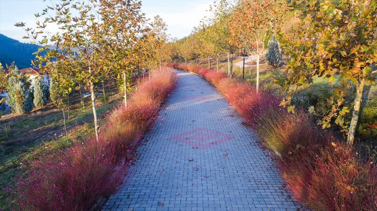 sonbahar yürüyüş yolu
